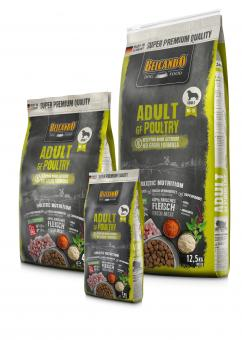 Adult Grain Free Poultry